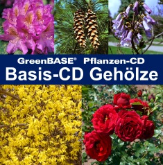 Cover Basis-CD Gehölze